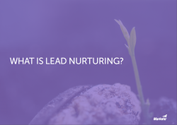 What Is Lead Nurturing snip
