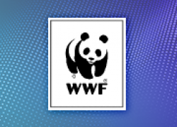 16239 WWF Case Study Tile